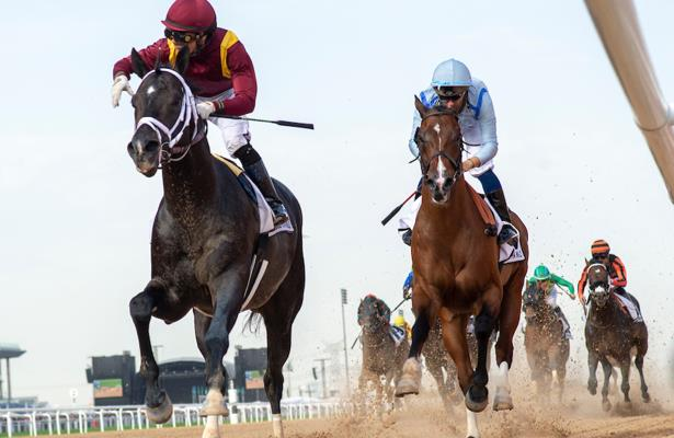 Dubai's $12-million World Cup horse race cancelled