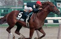 Easy Goer won the 1989 Gotham before going on to win that year's Wood Memorial, Belmont Stakes, Whitney, Travers, Woodward and Jockey Club Gold Cup (photo courtesy of Adam Coglianse)