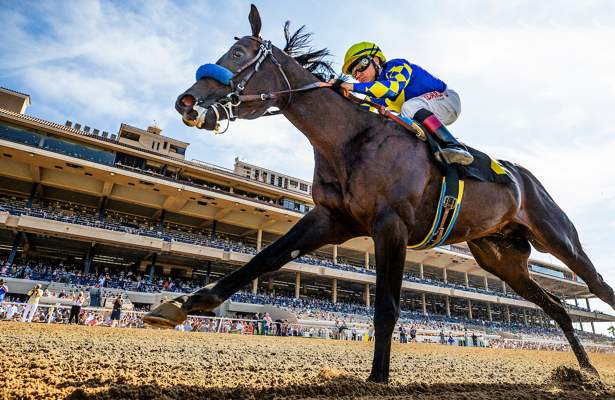 Eight Rings receives new Kentucky Derby 2020 trail target