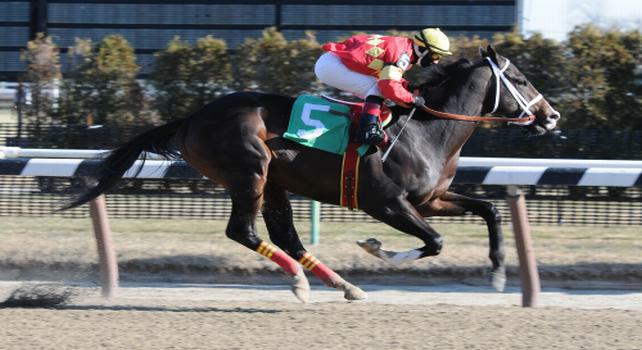 Eightyfiveinafifty breaks maiden at Aqueduct.