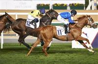Ejaaby (Doug Watson – Dane O'Neill) wins the Al Naboodah Electrical Handicap