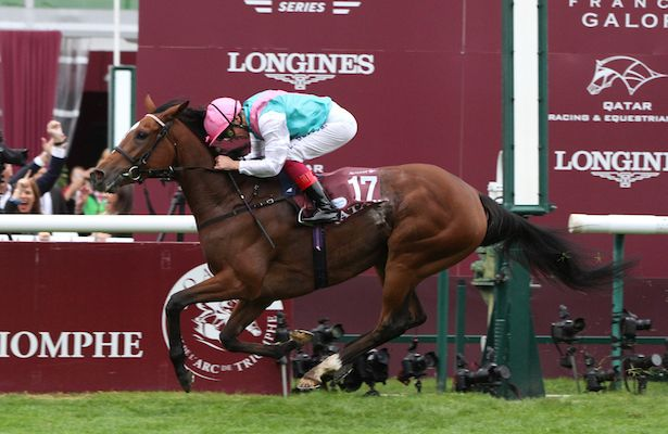This Week In Racing Enable Dominates In The Arc