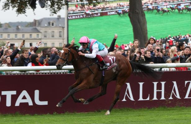 What to watch for: Arc heroine Enable returns to the races