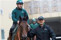 Erwan Charpy leads Petty Officer at Jinma Lake Racecourse - Credit Andrew Watkins