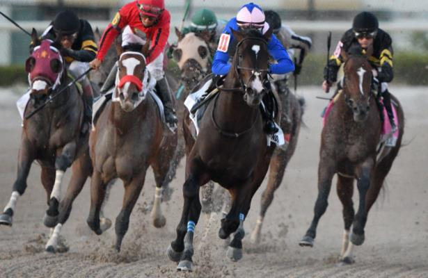 Head to Head: Handicapping the 2020 Florida Derby