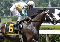 Fabulous Strike takes the 2009 True North on Belmont Day