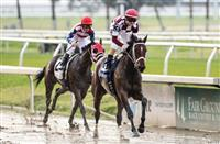 Kentucky Oaks winner could be running in the Rachel Alexandra