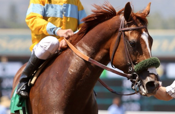 Stakes start considered for Faversham, California Chrome's brother