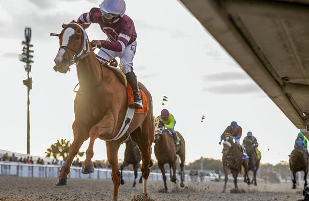 Saturday Plays: 6 picks across Aqueduct, Churchill and Del Mar