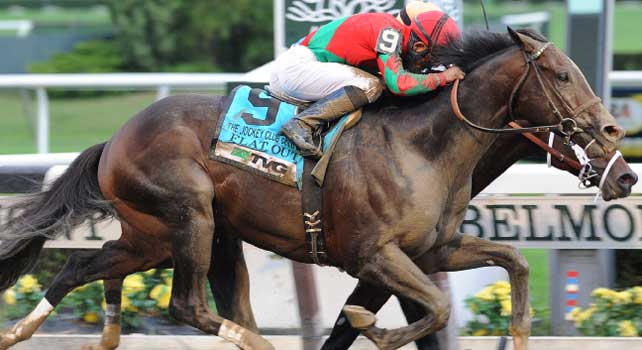 Flat Out beats Stay Thirsty in 2012 Jockey Club Gold Cup.