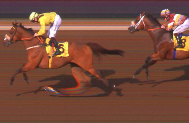 Forjaat wins Group 3 Jebel Ali Mile (1-20-17)