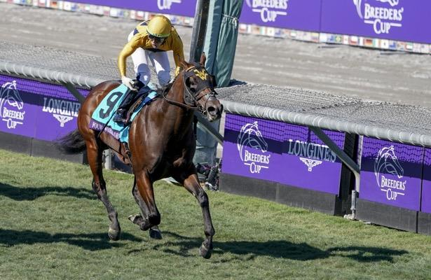 American Pharoah colt strikes in Breeders' Cup Juvenile Turf Sprint