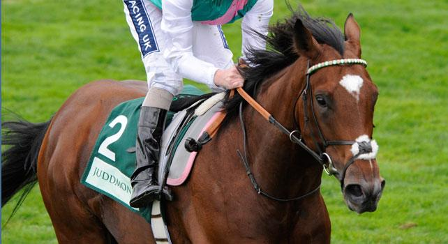 Frankel tops in Europe