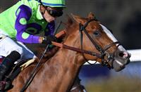 Good Magic leads Brown's Kentucky Derby 2018 cast