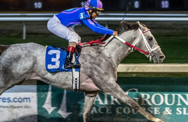 Super Screener: Gray Attempt can stretch in Smarty Jones