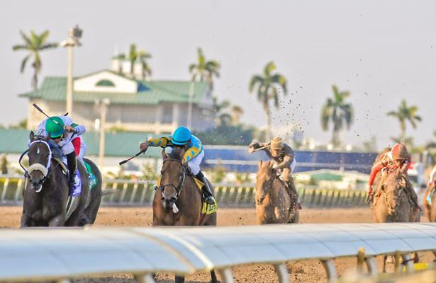 Mandatory Pick 6 payouts Tuesday at Gulfstream, Tampa Bay