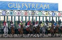 Gulfstream Park Entries & Results