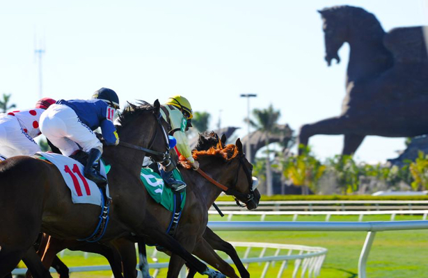 Horse Racing Roulette could make Gulfstream Park debut