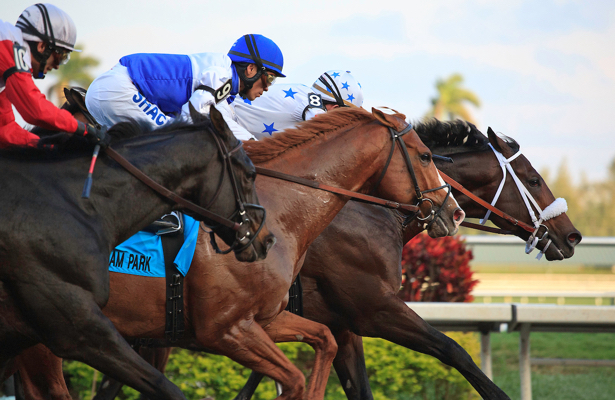 Gulfstream Park to offer Florida Derby advance wagering