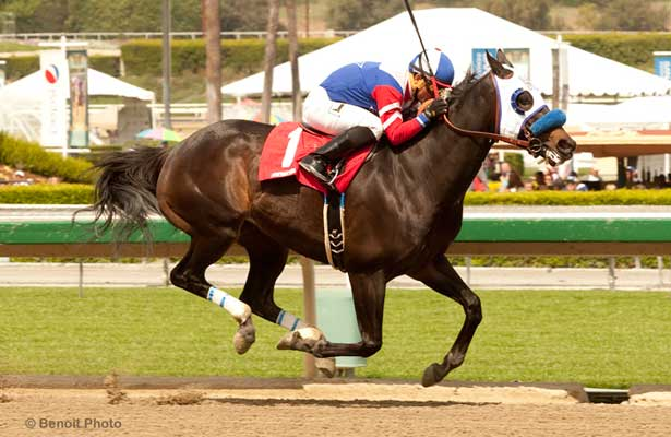 Halo Dolly wins 2014 Dream of Summer Stakes.