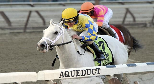 Kentucky Derby 2012 Prep Preview VIDEO: Blue Grass Stakes, Hansen
