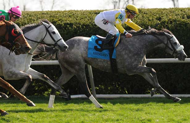 Aoril 12, 2014: Hard Not to Like and jockey Javier Castellano win the G1 Jenny Wiley S. at Keeneland for owner Hillsbrook Farms and trainer Michael Matz. Jessica Morgan/ESW/CSM