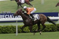 Helene Paragon coasts to victory in the Class 1 Sha Tin Mile Trophy last term.