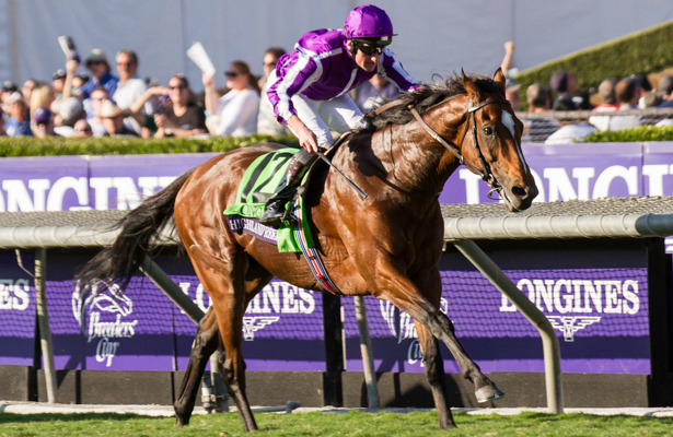 Highland Reel_BC Turf_Mary 615 X 400