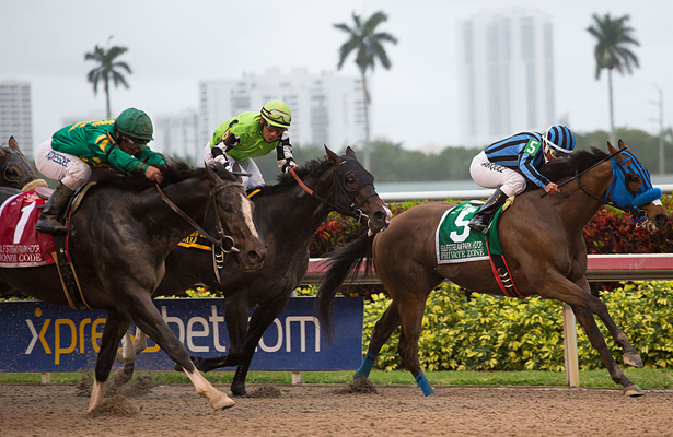 March 7, 2015: Honor Code (1), ridden by jockey Javier Castellano gets up late to nip Private Zone (5) at the wire to win the Gulfstream Park Handicap(G2). Gulfstream Park, Hallandale Beach (FL). Arron Haggart/ESW/CSM