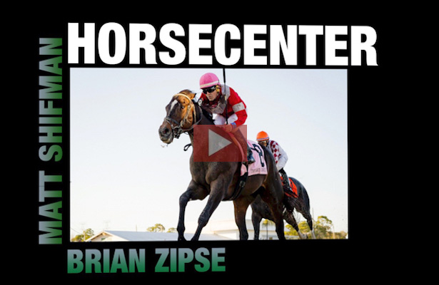 HorseCenter - McCraken is Back & Gun Runner Returns [VIDEO]