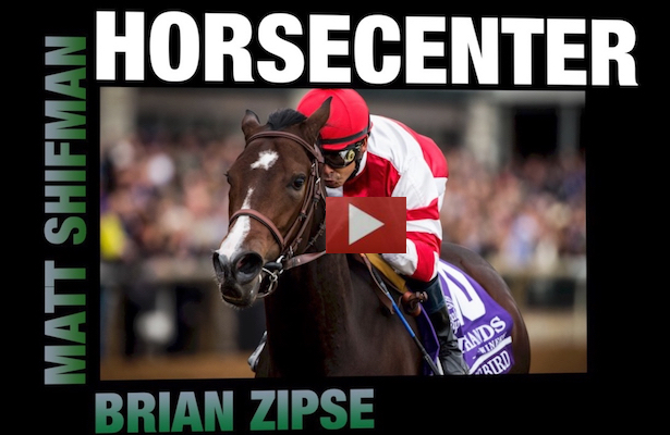 HorseCenter – Songbird Retirement Special [VIDEO]