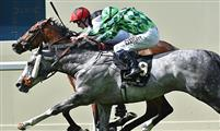 Free Eagle (bay) noses out The Grey Gatsby (grey) on the wire of the Prince of Wales Stakes (G1) on June 17th, 2015