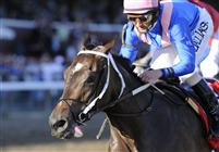 Hot Dixie Chick runs away with the 2009 Spinaway at Saratoga