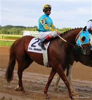 Soul Warrior with John Velazquez 2009 Super Derby