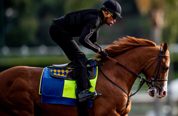 Saturday Kentucky Derby update: Improbable 'improving with each start'
