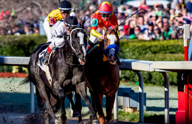 Horse Racing Talk: On all things Kentucky Derby preps