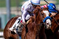 Breeders' Cup to 2019 Kentucky Derby: 3 horses to watch