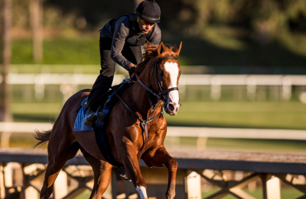 Kentucky Derby 2019 Radar: Improbable to make stakes debut