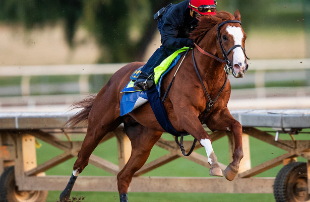 Improbable may 'be a little closer' early in Preakness Stakes