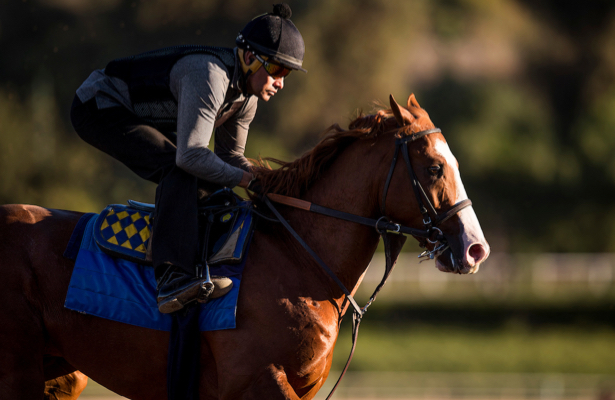 Kentucky Derby 2019 Scouting Report: West Coast Division II