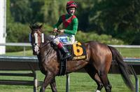 Infinite Magic with Channing Hill aboard won the American Derby grade 3 stakes race Saturday afternoon at Arlington Park in Illinois.