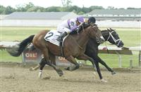 Irap nips Girvin on the wire in the $500,000 Ohio Derby