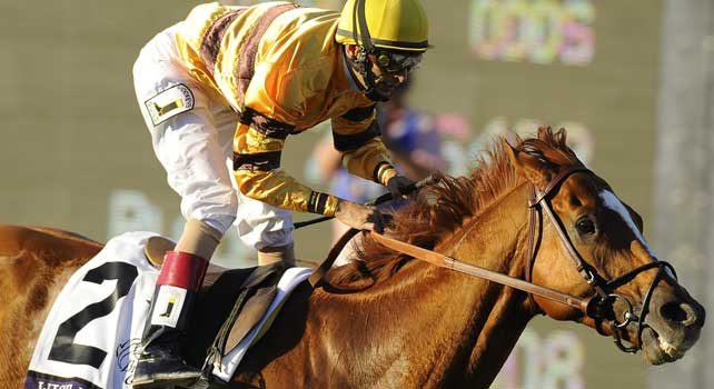 Nov. 03, 2012 - Arcadia, California, U.S - Wise Dan ridden by John Velazquez and trained by Charles Lopresti, wins the Breeders' Cup Mile at Santa Anita Park in Arcadia, CA