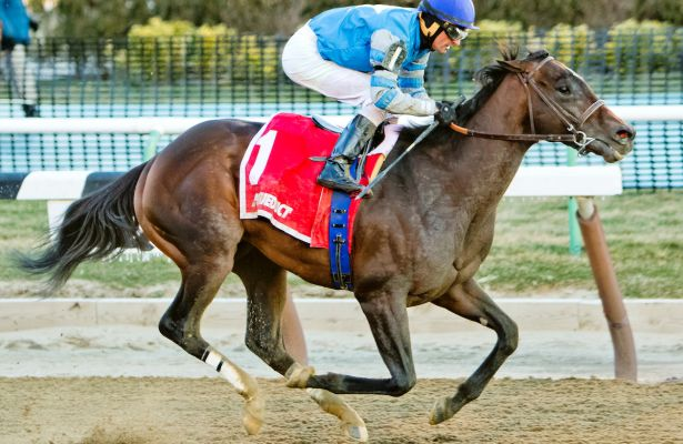 Gormley wins $1 million Santa Anita Derby by half-length