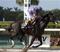 Jackson Bend and jockey Jeffrey Sanchez win the Florida Stallion Stakes at Calder