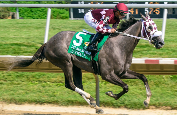 Different training approach leads Jaywalk back to winner's circle