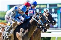 ELMONT, NY - JUNE 10: Joking #2 (blue cap), with Manuel Franco riding, wins the True North Stakes on Belmont Stakes Festival Friday at Belmont Park on June 10, 2016 in Elmont, New York. (Photo by Scott Serio/Eclipse Sportswire/Getty Images)
