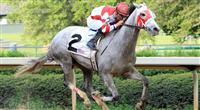 Joyful Victory romps in the Fantasy Stakes at Oaklawn