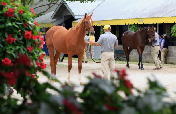 Keeneland September 2018_615x400