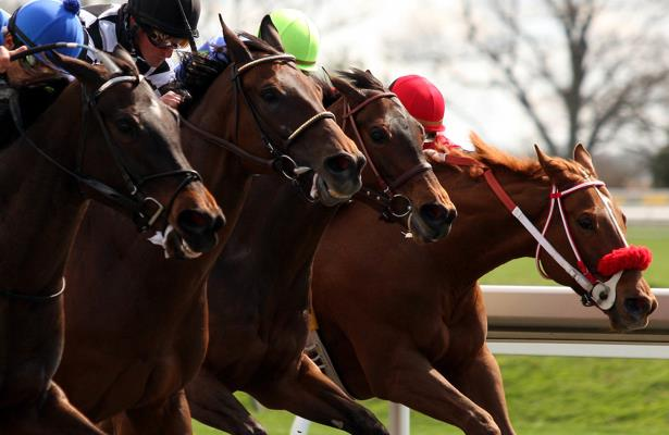 With 600 horses on site, safety 'priority one' at Keeneland